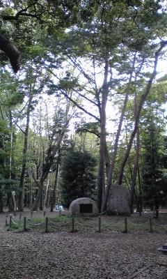 林試の森公園です